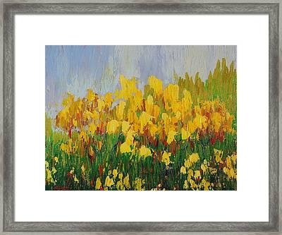 Yellow Brush Framed Print by Margaret Bobb