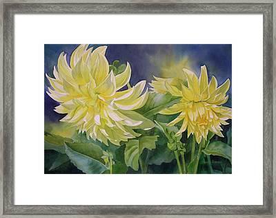 Yellow Dahlia Duet Framed Print by Sharon Freeman