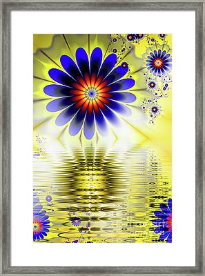 Yellow Nova Framed Print by John Edwards