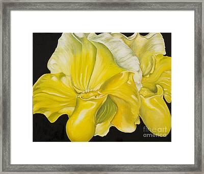 Yellow Orchids Framed Print by Sweta Prasad