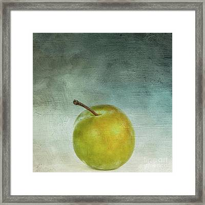 Yellow Plum Framed Print by Bernard Jaubert