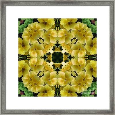 Yellow Primrose Kaleidoscope Framed Print by Smilin Eyes  Treasures