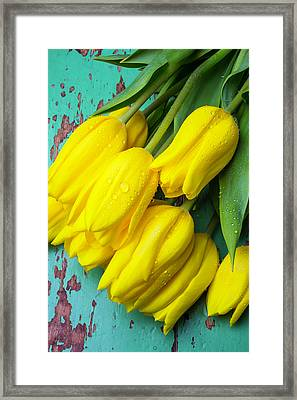 Yellow Spring Tulips Framed Print by Garry Gay