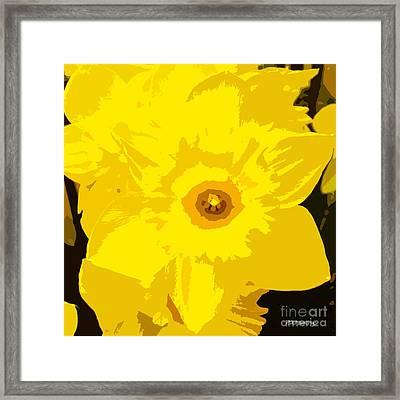 Yellow Star Framed Print by Patrick J Murphy