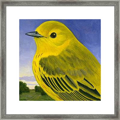 Yellow Warbler Framed Print by Francois Girard
