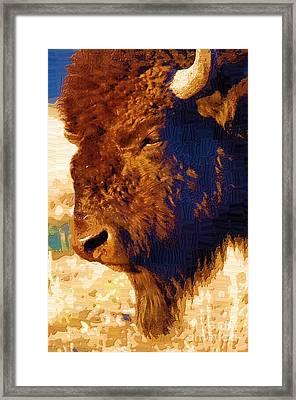 Yellowstone Buffalo Framed Print by Diane E Berry