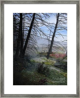 Yellowstone National Park 4 Framed Print by Xueling Zou