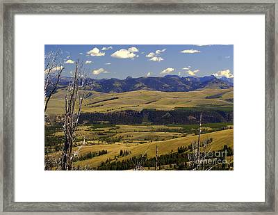 Yellowstone Vista 2 Framed Print by Marty Koch