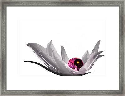 Yin Yang Framed Print by Jacky Gerritsen