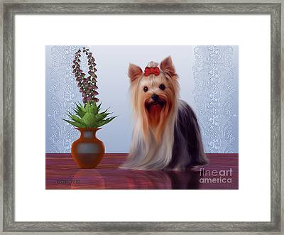 Yorkshire Terrier Framed Print by Corey Ford