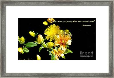 You Have To Grow Framed Print by Gena Weiser
