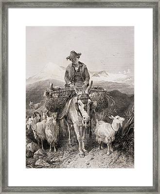 Young Granada Goatherder Riding A Framed Print by Vintage Design Pics
