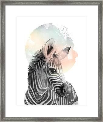 Zebra // Dreaming Framed Print by Amy Hamilton