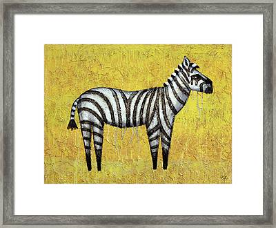 Zebra Framed Print by Kelly Jade King