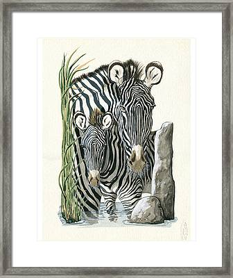 Zebra Mother And Colt Protect Our Children Painting Framed Print by Linda Apple