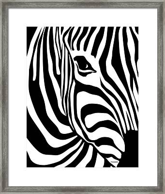 Zebra Framed Print by Ron Magnes