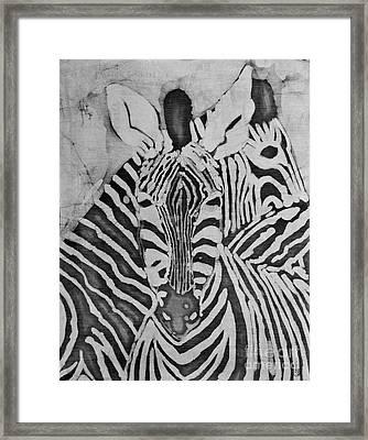 Zebras Framed Print by Caroline Street