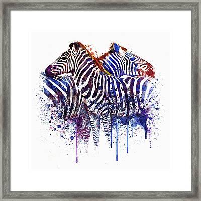 Zebras In Love Framed Print by Marian Voicu