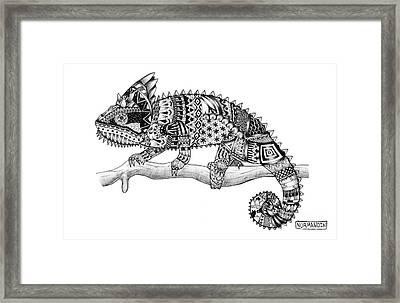 Zen Chameleon Framed Print by Drew Normandin