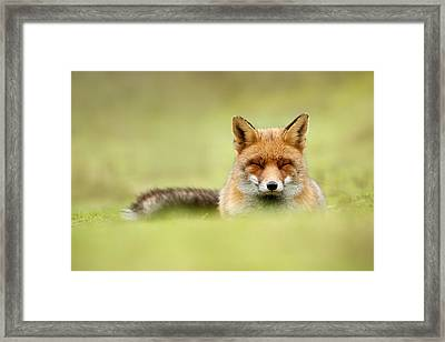 Zen Fox Series - Zen Fox In A Sea Of Green Framed Print by Roeselien Raimond