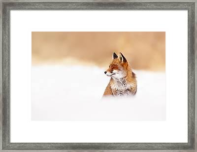 Zen Fox Series - Zen Fox In Winter Mood Framed Print by Roeselien Raimond