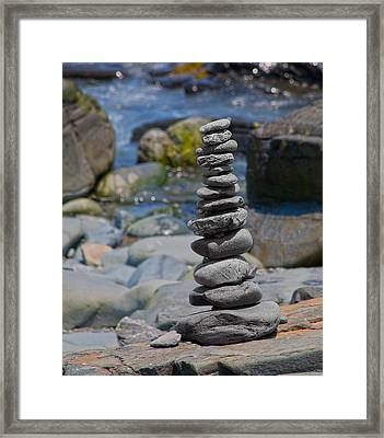 Zensynergy  Framed Print by Betsy C Knapp
