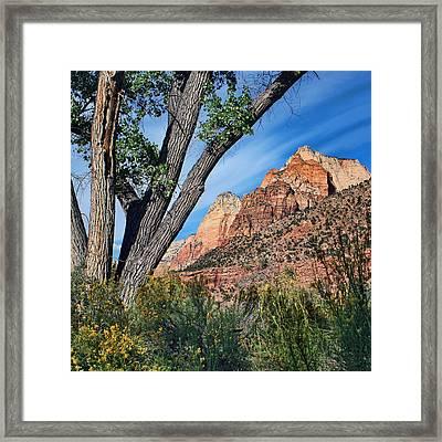 Zion Canyon - Pa'rus Trail Framed Print by Nikolyn McDonald