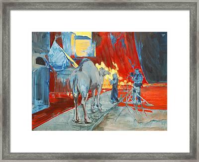 Zohan Camel Framed Print by Amy Bernays