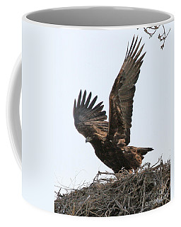 Coffee Mug featuring the photograph Golden Eagle Takes Off by Bill Gabbert