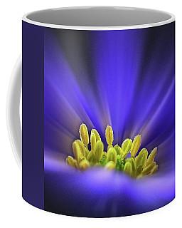 blue Shades - An Anemone Blanda Coffee Mug by John Edwards