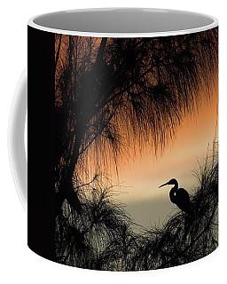 A Snowy Egret (egretta Thula) Settling Coffee Mug by John Edwards