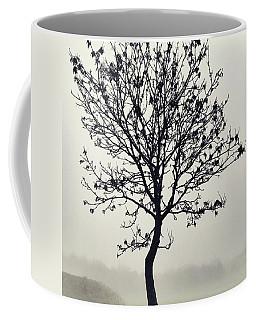 Another Walk Through The Coffee Mug by John Edwards