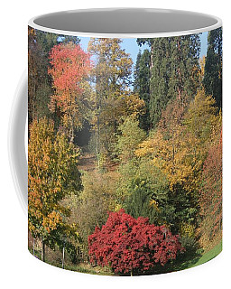 Coffee Mug featuring the photograph Autumn In Baden Baden by Travel Pics