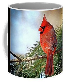 Coffee Mug featuring the photograph December's Cardinal by Rodney Campbell
