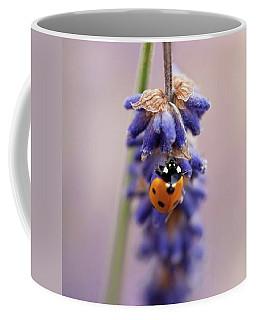 Ladybird On Norfolk Lavender  #norfolk Coffee Mug by John Edwards