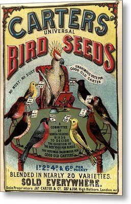 1890s Uk Carters Bird Seed Birds Metal Print by The Advertising Archives