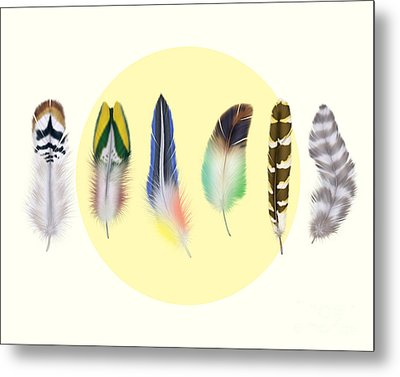 Feathers 2 Metal Print by Mark Ashkenazi