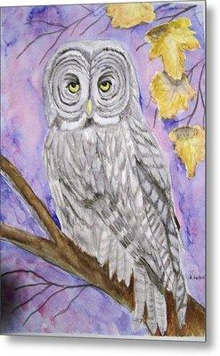 Grey Owl Metal Print by Belinda Lawson