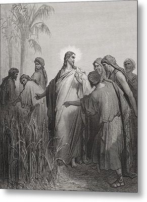 Jesus And His Disciples In The Corn Field Metal Print by Gustave Dore