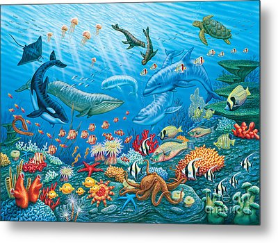 Ocean Life Metal Print by Phil Wilson