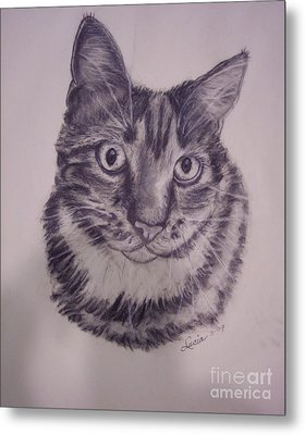Pet Portraits  Metal Print by Lucia Grilletto