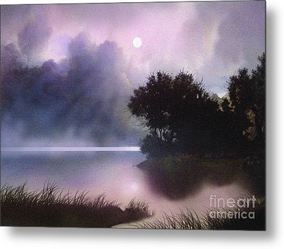 Rain Lake Metal Print by Robert Foster