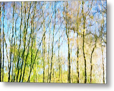 Tree Reflections Abstract Metal Print by Natalie Kinnear