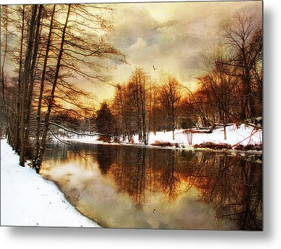 Winter Sunset Metal Print by Jessica Jenney
