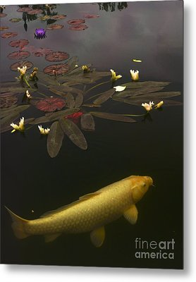 0212 Yellow Koi Metal Print by Lawrence Costales