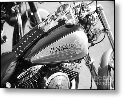 110th Anniversary Harley Davidson Metal Print by Stefano Senise