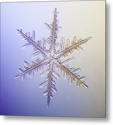 A Real Snowflake Showing The Classic Metal Print by Marion Owen