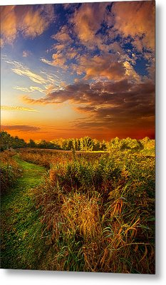 Along The Way Metal Print by Phil Koch