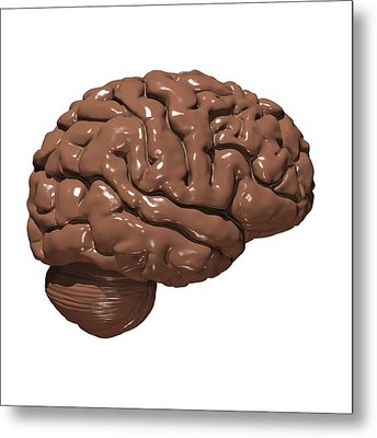 Brain Made Of Chocolate Metal Print by Russell Kightley