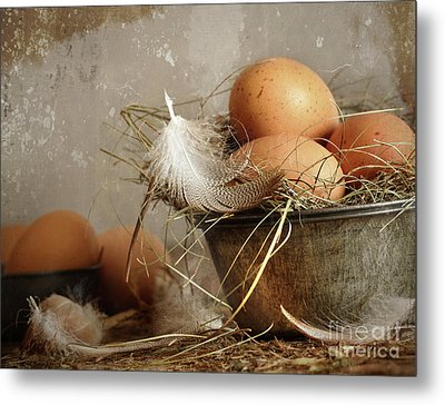 Brown Speckled Eggs  In Old Tin Bowl Metal Print by Sandra Cunningham